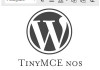Como Exibir o TinyMCE nos Resumos do Post WordPress