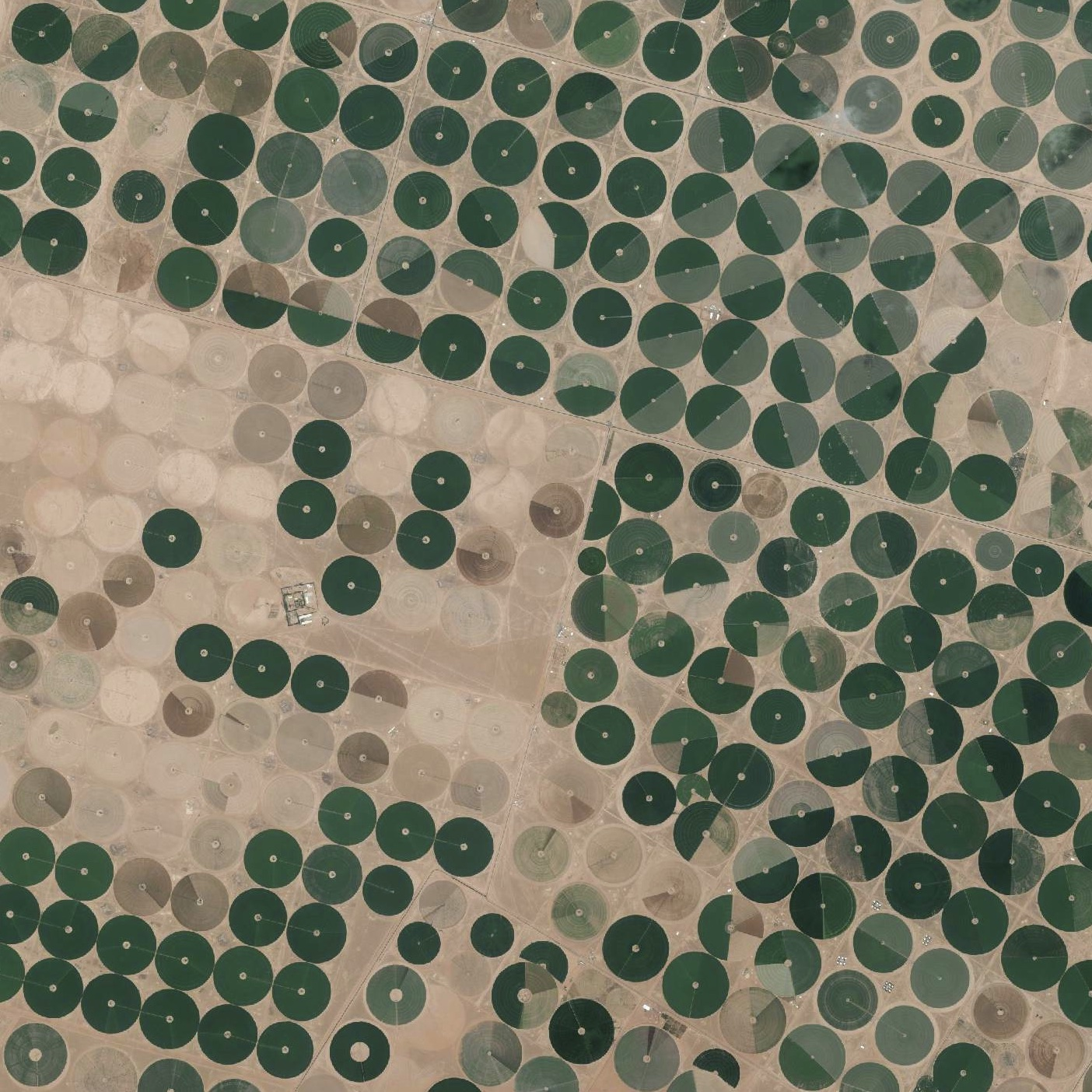 center-pivot-irrigation-saudi-arabia